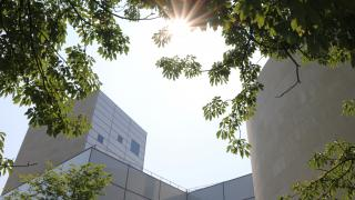 Sun Over Lewis Arts Center